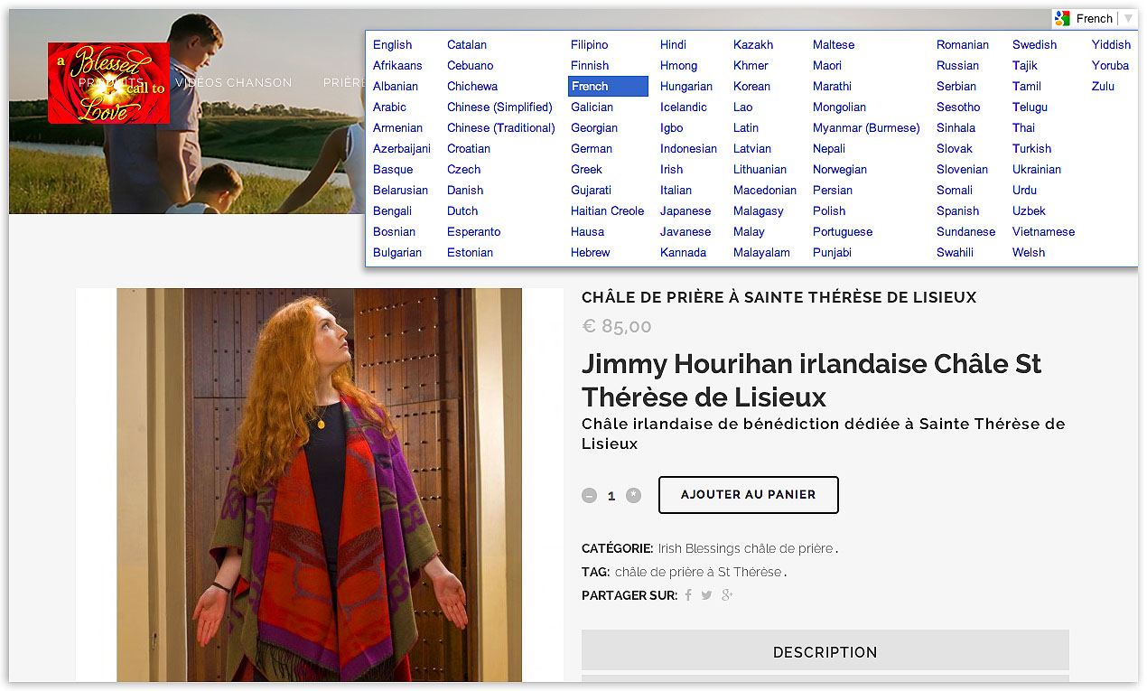 Website Google translation feature screen shot by veetoo design studio Northern Ireland.