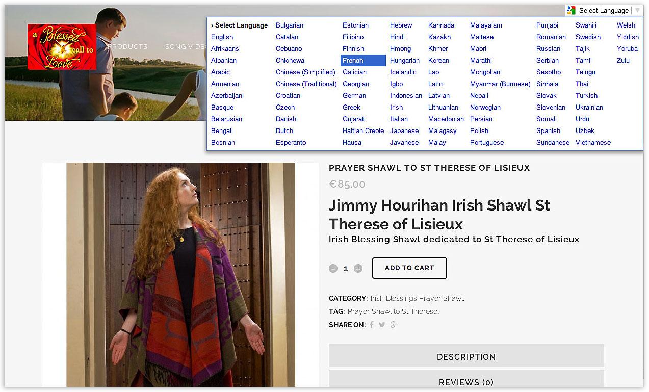 Website Google translation feature screen shot showing text prior to translation - by veetoo design studio Northern Ireland.