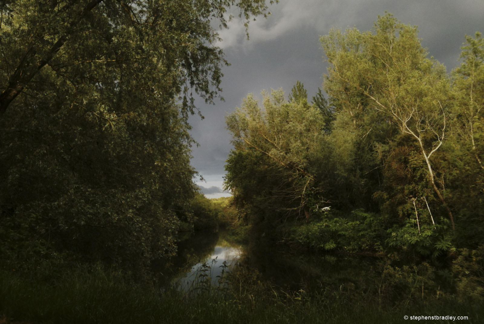 Lagan Tow Path, River Lagan, Belfast, Northern Ireland landscape photograph.