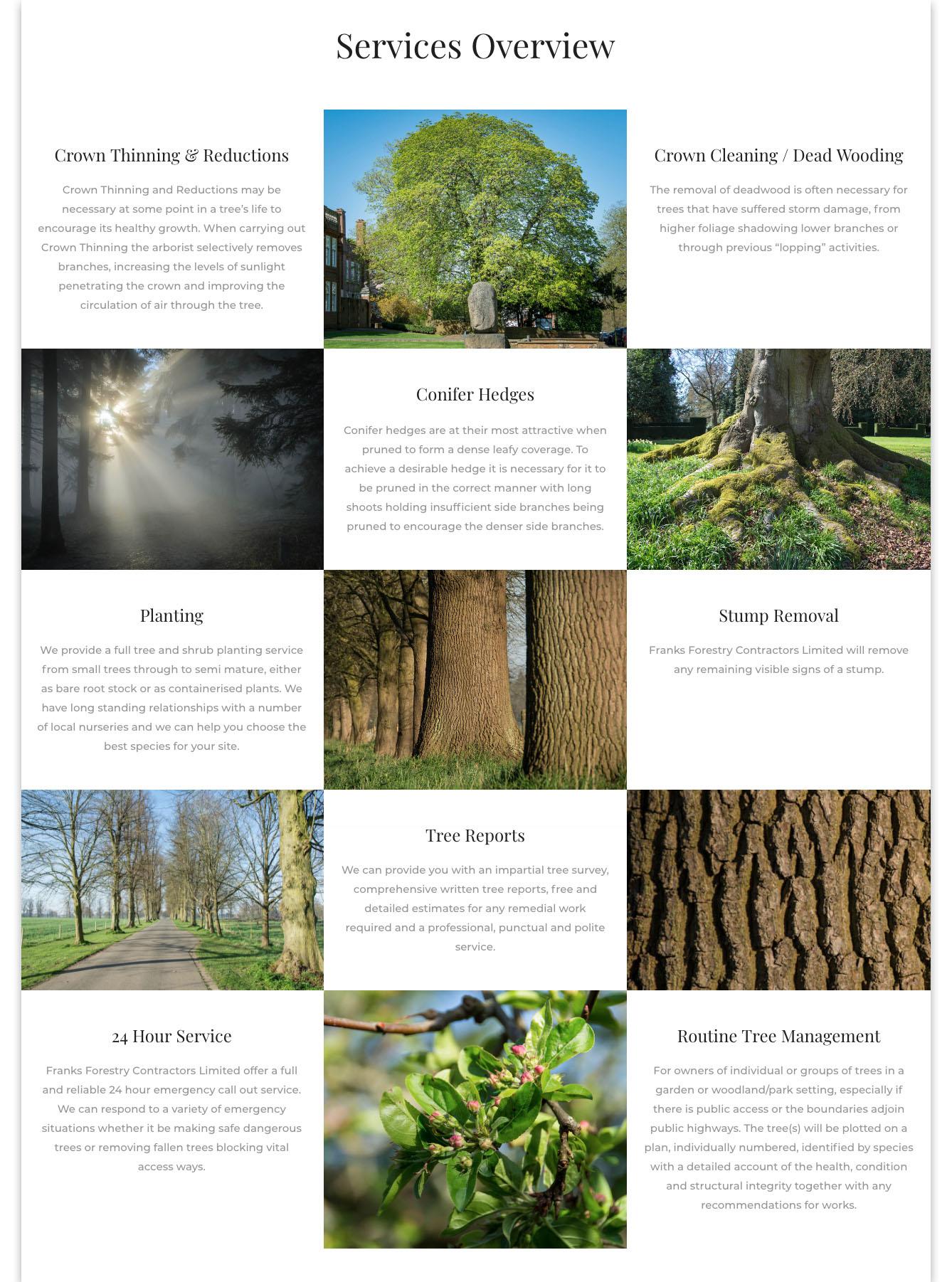 Web designers Belfast portfolio web site - franks forestry home page image 2